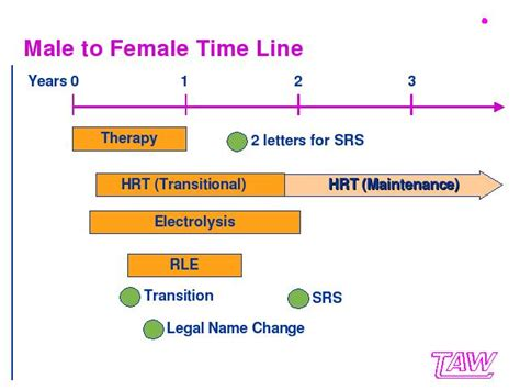 Male to Female Time Line