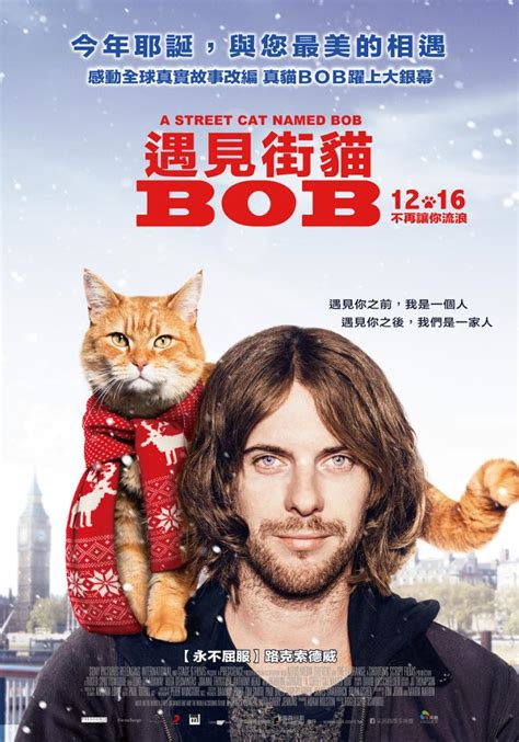 遇見街貓BOB A Street Cat Named Bob - Yahoo奇摩電影